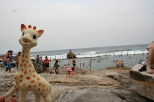 Sophie the Giraffe on Holiday
