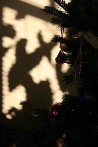 Christmas Tree shadows