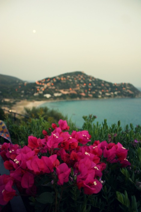 view of sea, bougainvillea and mountains at dusk in Sardinia