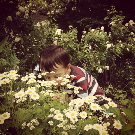 boy smelling flowers