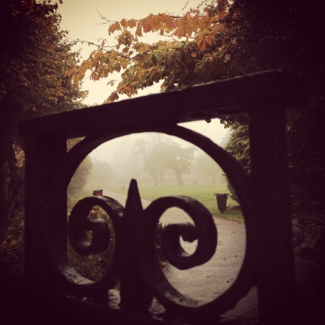 autumn fog through park gate