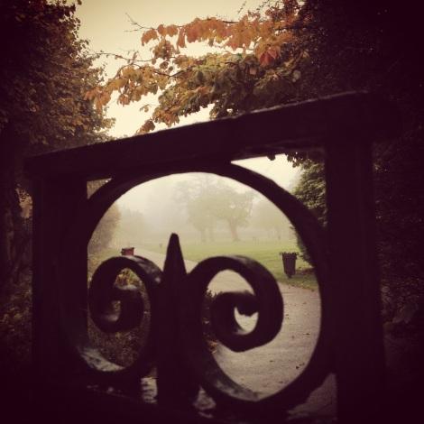 autumn fog through park gate