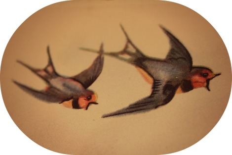 swallows in 1950s illustration