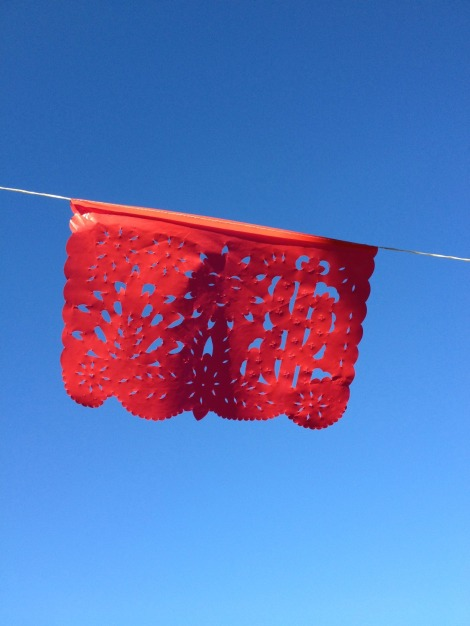 red bunting against a blue sky