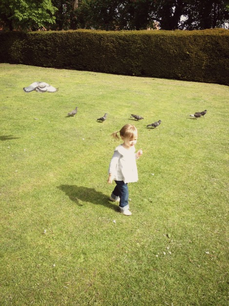 girl being chased by bird