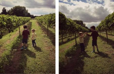 children strawberry picking