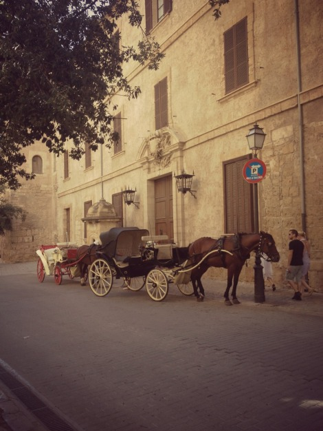 Horse and Cart in Palma | Bluebirdsunshine