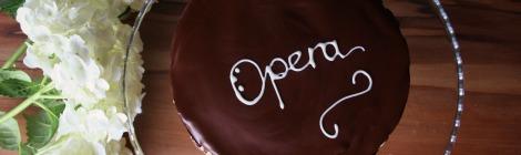 Amaretti Opera Cake | bluebirdsunshine