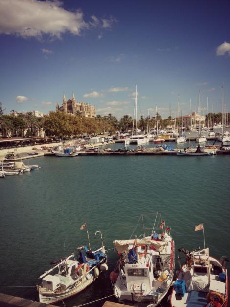 Palma Harbour | bluebirdsunshine