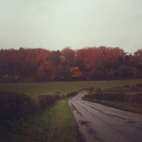 autumn in Hertfordshire | bluebirdsunshine