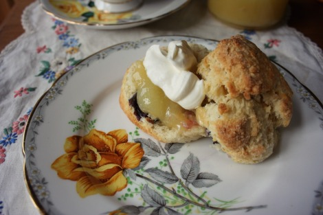 Blueberry & yoghurt scones with lemon curd | bluebirdsunshine