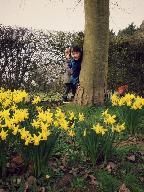 children with daffodils | bluebirdsunshine