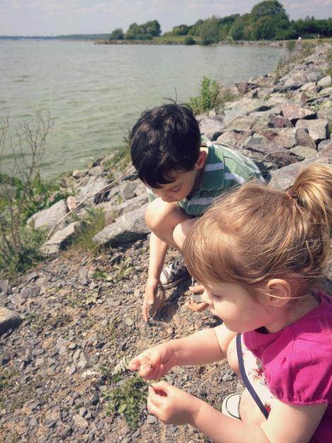 siblings playing | bluebirdsunshine