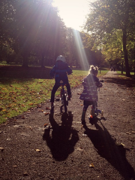 Autumn siblings   bluebirdsunshine