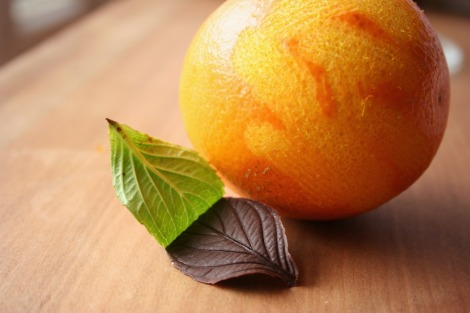 Chocolate leaves and orange | bluebirdsunshine